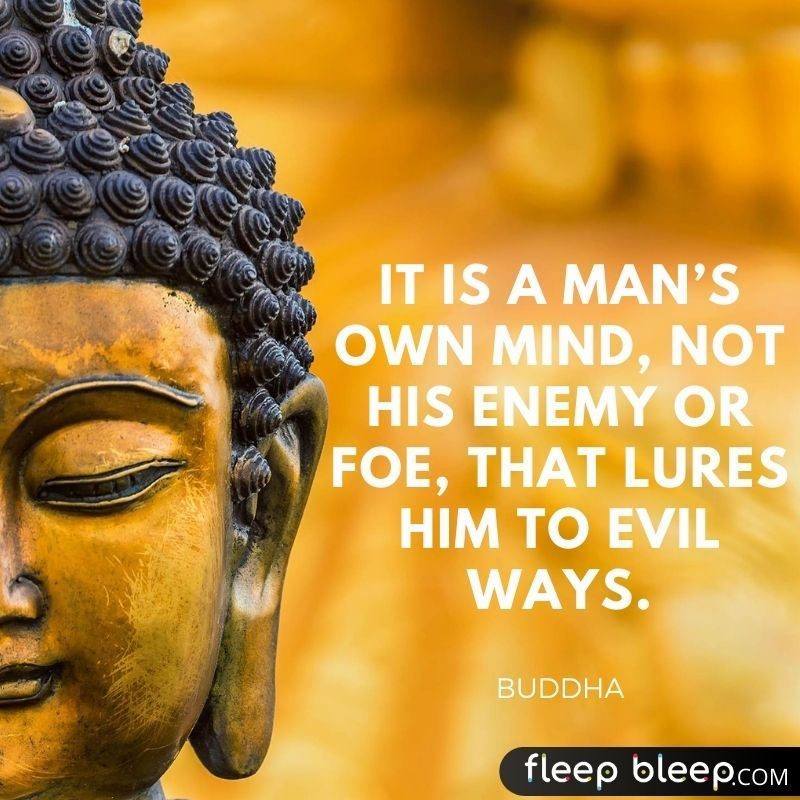 daily buddhist quotes