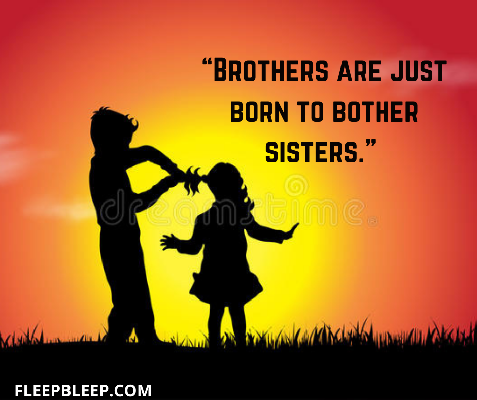 Sis Bro Quotes